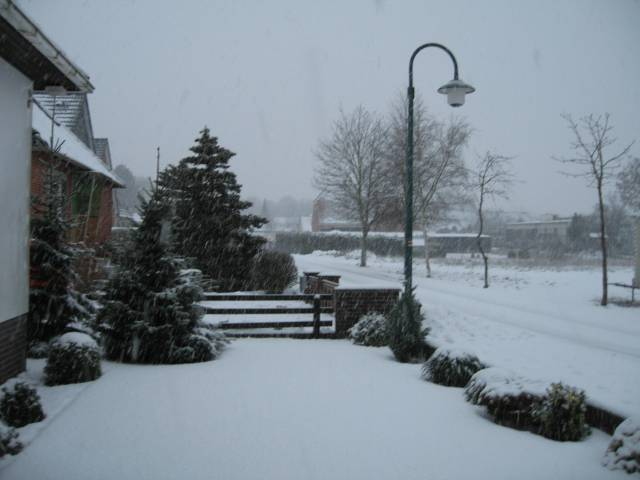 My street in the snow