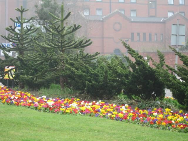 Flowers in Leeds