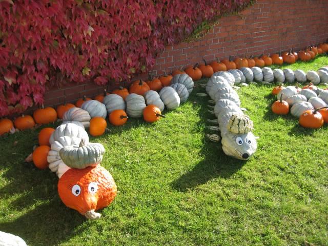 Pumpkin snakes