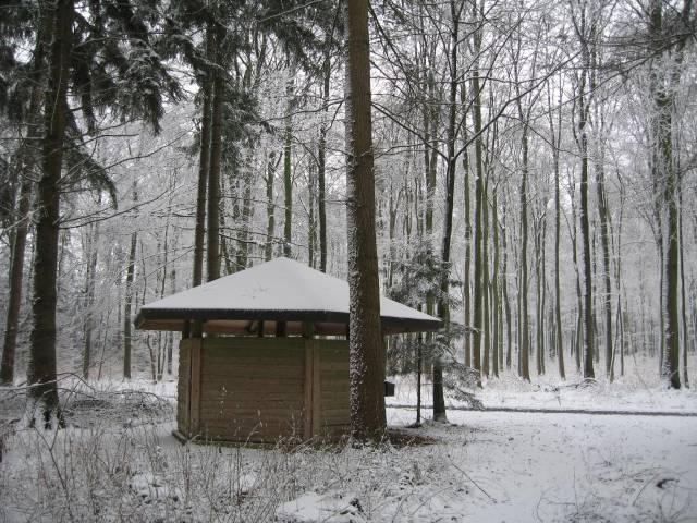 Snowy hut