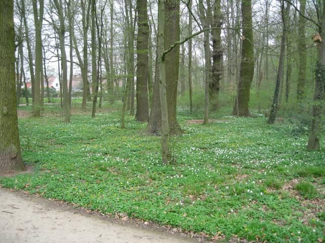 Wolfskuhle Park, Bremen