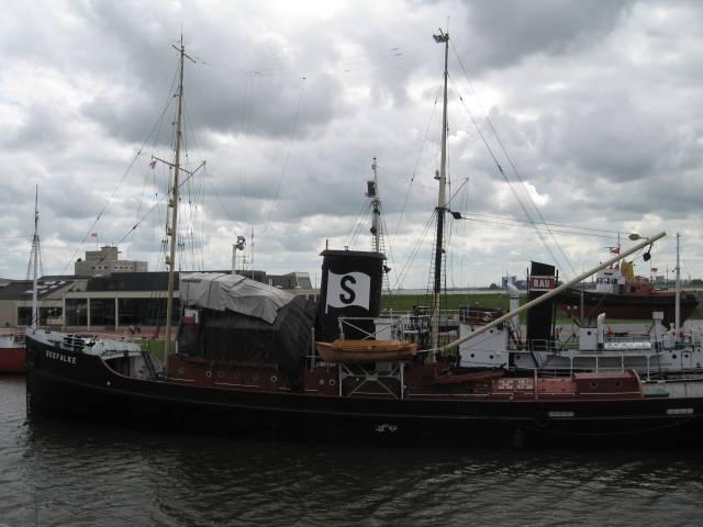 Bremerhaven Seefalke