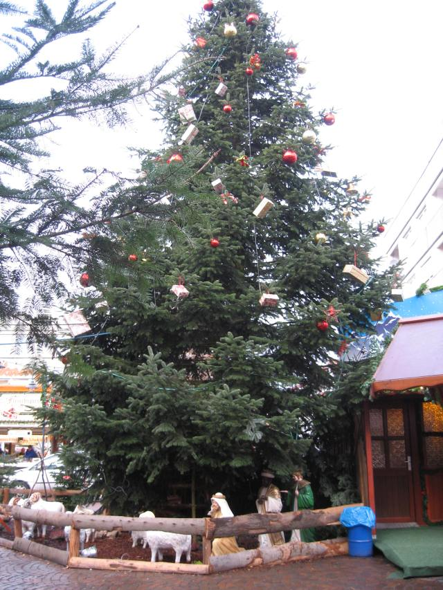 Vechta Christmas tree