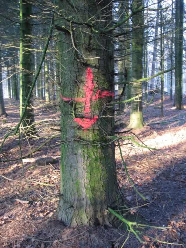Tree arrow