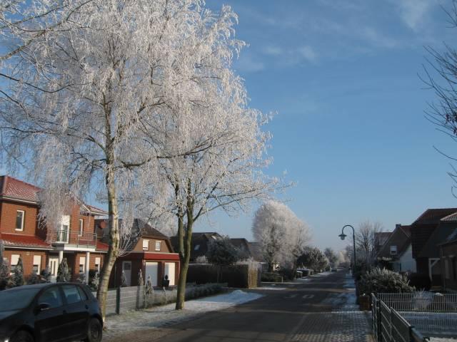 Hoarfrost street