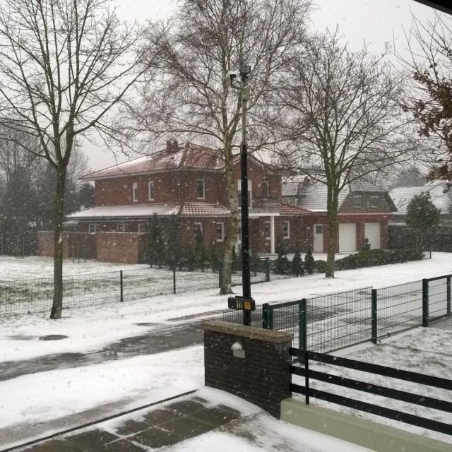 Snowy neighbour house