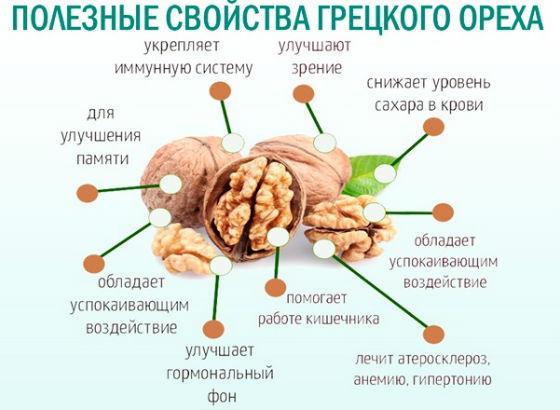Полезные свойства  влияние на организм
