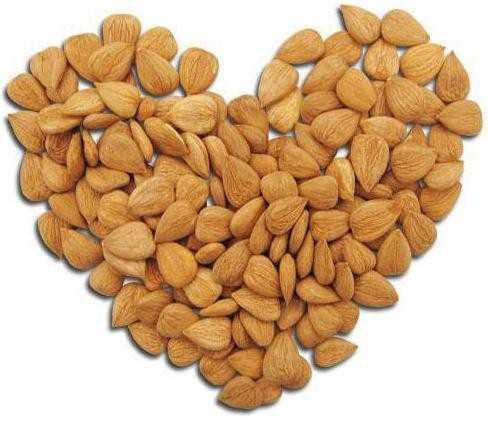 абрикосовые косточки польза и вред при беременности