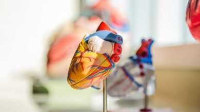 Photo of Укрепление сердечной мышцы в домашних условиях