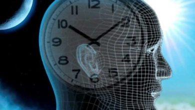 Photo of Суточные биоритмы человека по часам