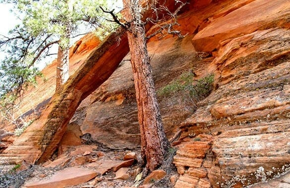 Two Pines Arch Hike Zion National Park