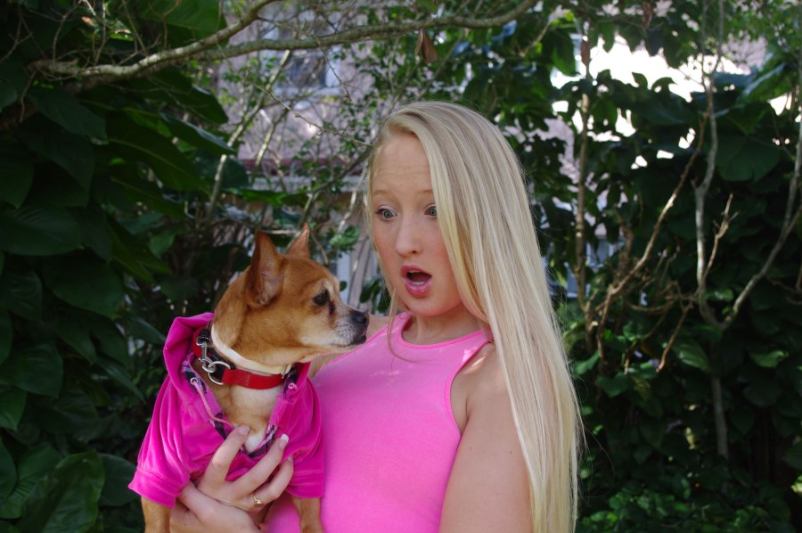 "JP Taravella High School presents ""Legally Blonde the Musical"""