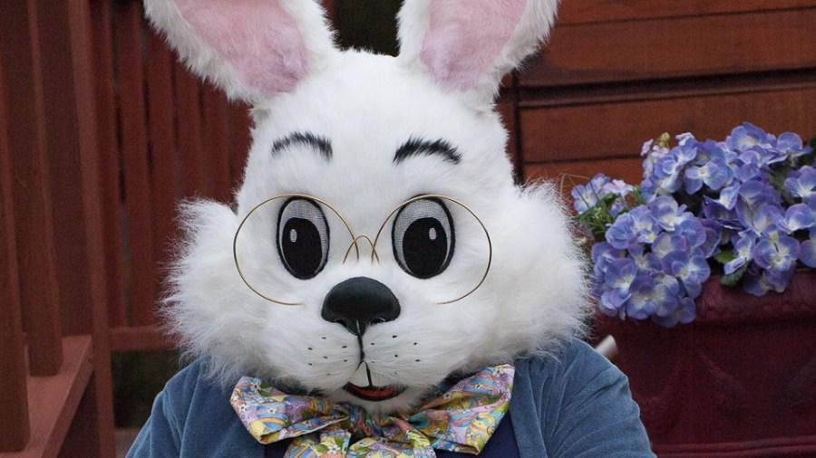 bunnybasket-1