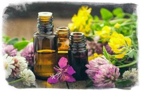 Flores de Bach - Terapia floral - Corazón y vida - Tfno.:675 829 401 (sólo WhatsApp - info@corazonyvidamadrid.com