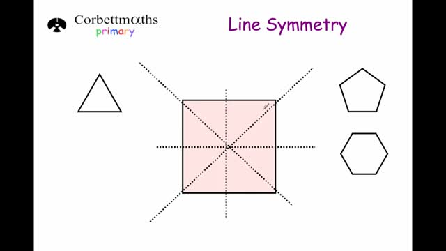 line-symmetry_dvd.original