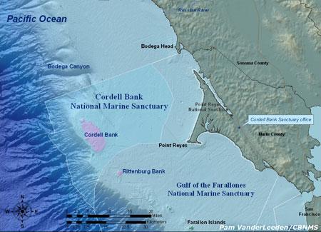 Cordel Bank National Marine Sanctuary