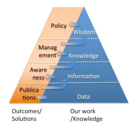Knowledge triangle