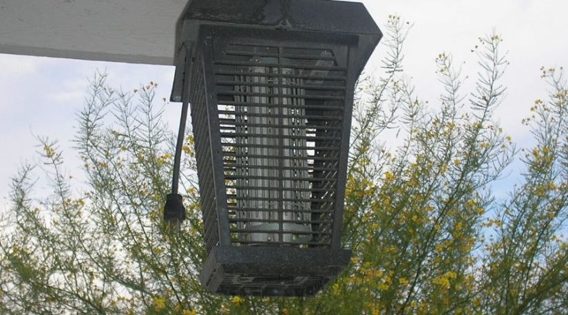 The best cordless bug zapper hanged from the house ceiling to keep the flying insects out of the room