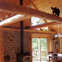 Cordwood on a Basement is Off Grid