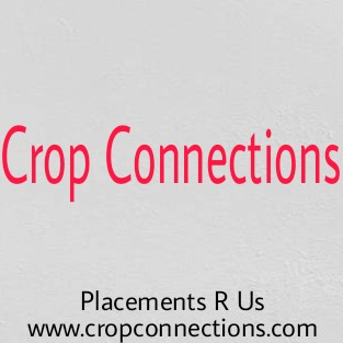 Crop Connections – from Vacancy to Occupancy!