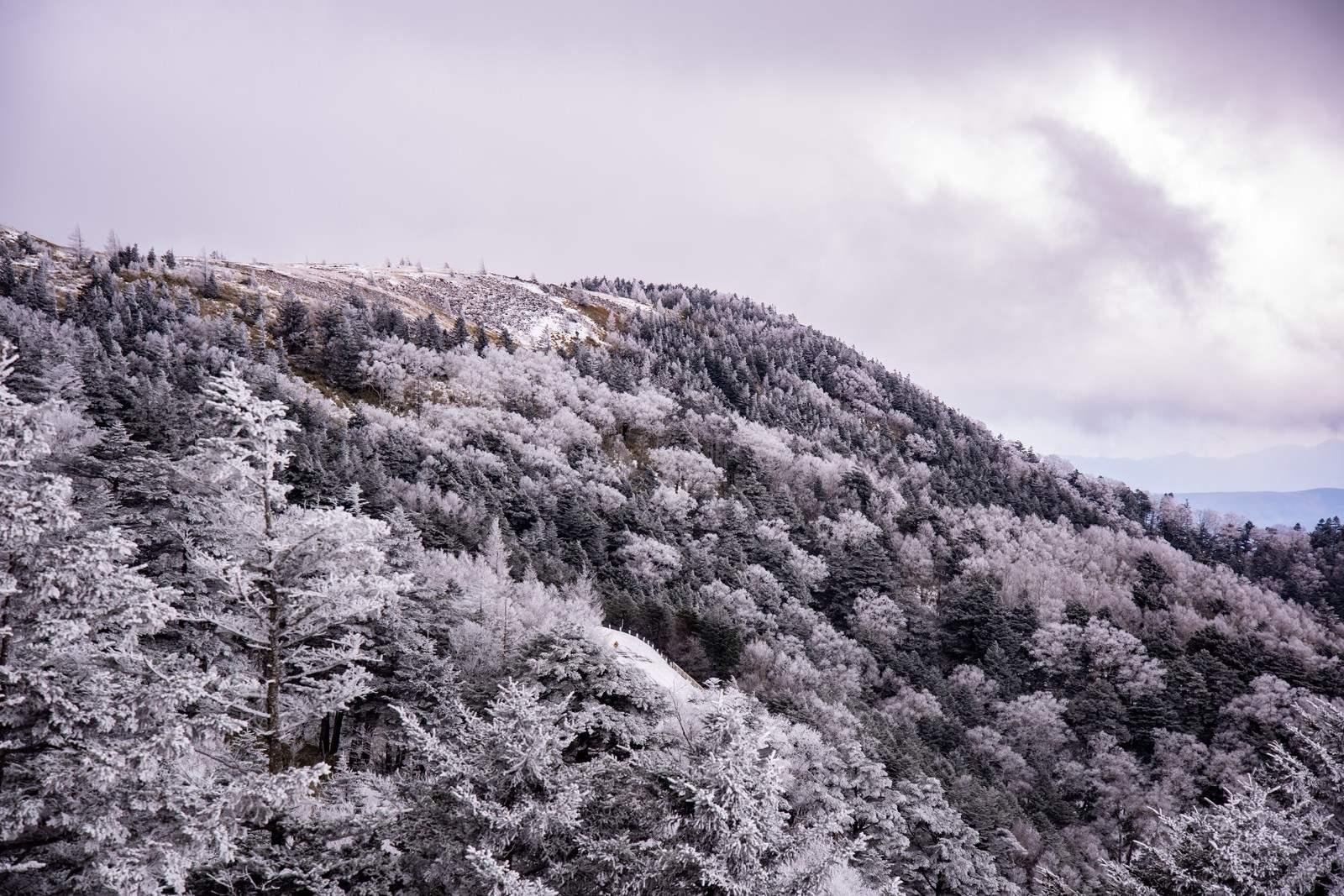 山にまつわる怖い話『もどり雪』|洒落怖・山の怪談