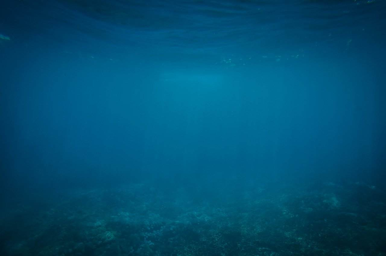 海にまつわる怖い話『謎の海洋物体』|洒落怖・海の怪談