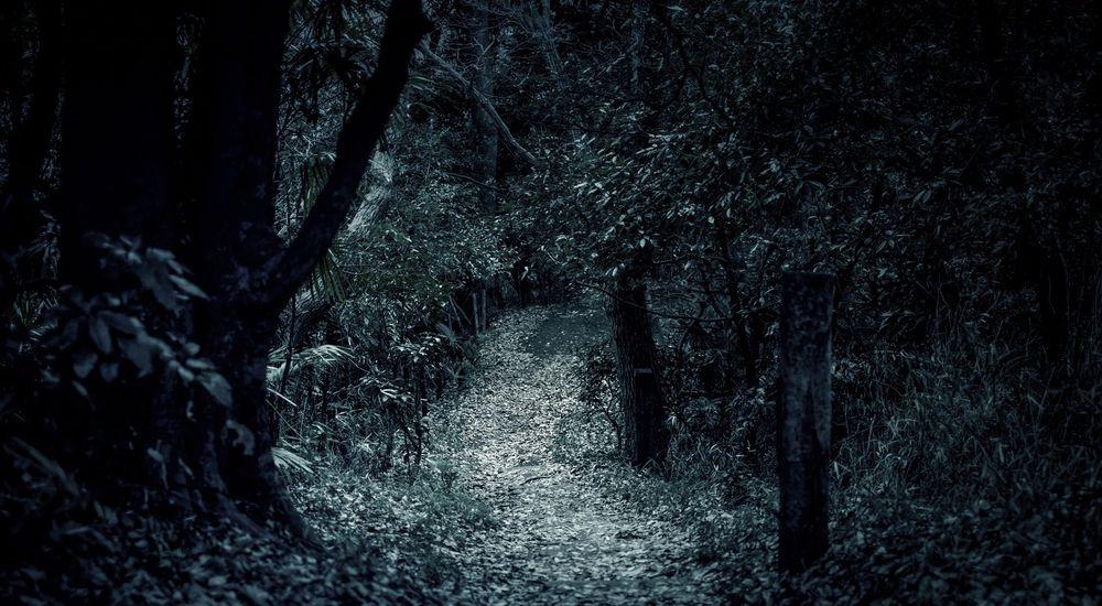 『鬼になった人の話』|怖い話・不思議な話
