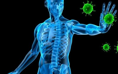 How to Protect Yourself and Others From the Corona Virus – Core Flex Wellness