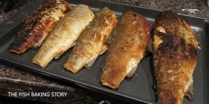 the-fish-baking-story
