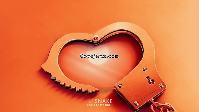 DJ Snake You Are My High Mp3 Download
