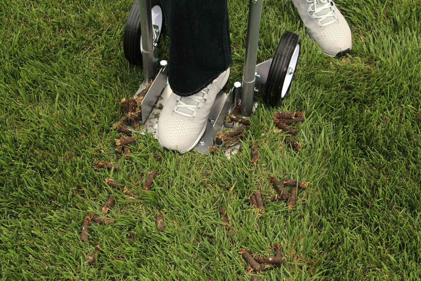 Image result for lawn aeration steps