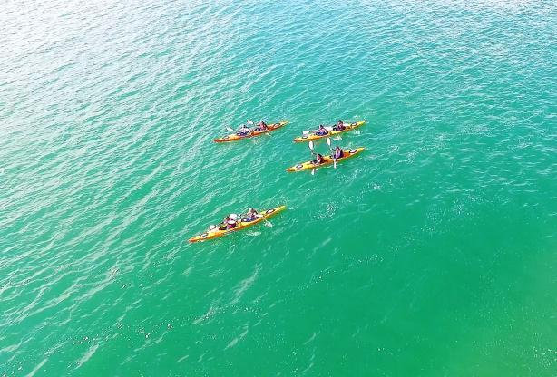 Des kayak au milieu de la mer du Nord