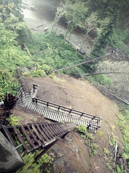 ladders to get to suspension bridge