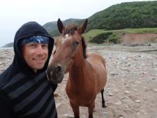 Am i a Horse Whisperer