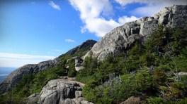 the trail on Mount Chocorua