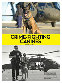 crime-dogs-thumb