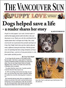 dogs-saved-thumbnail