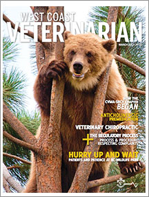 WCV-March-2013-thumbnail