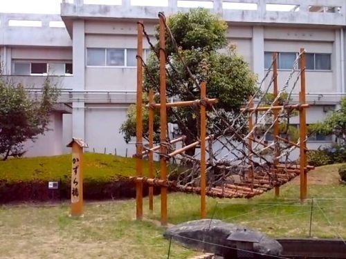 sadahisa-umemoto-5