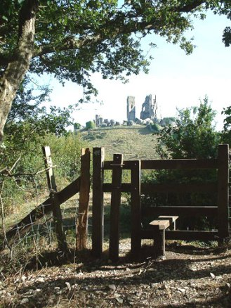 Walking near Corfe CAstle