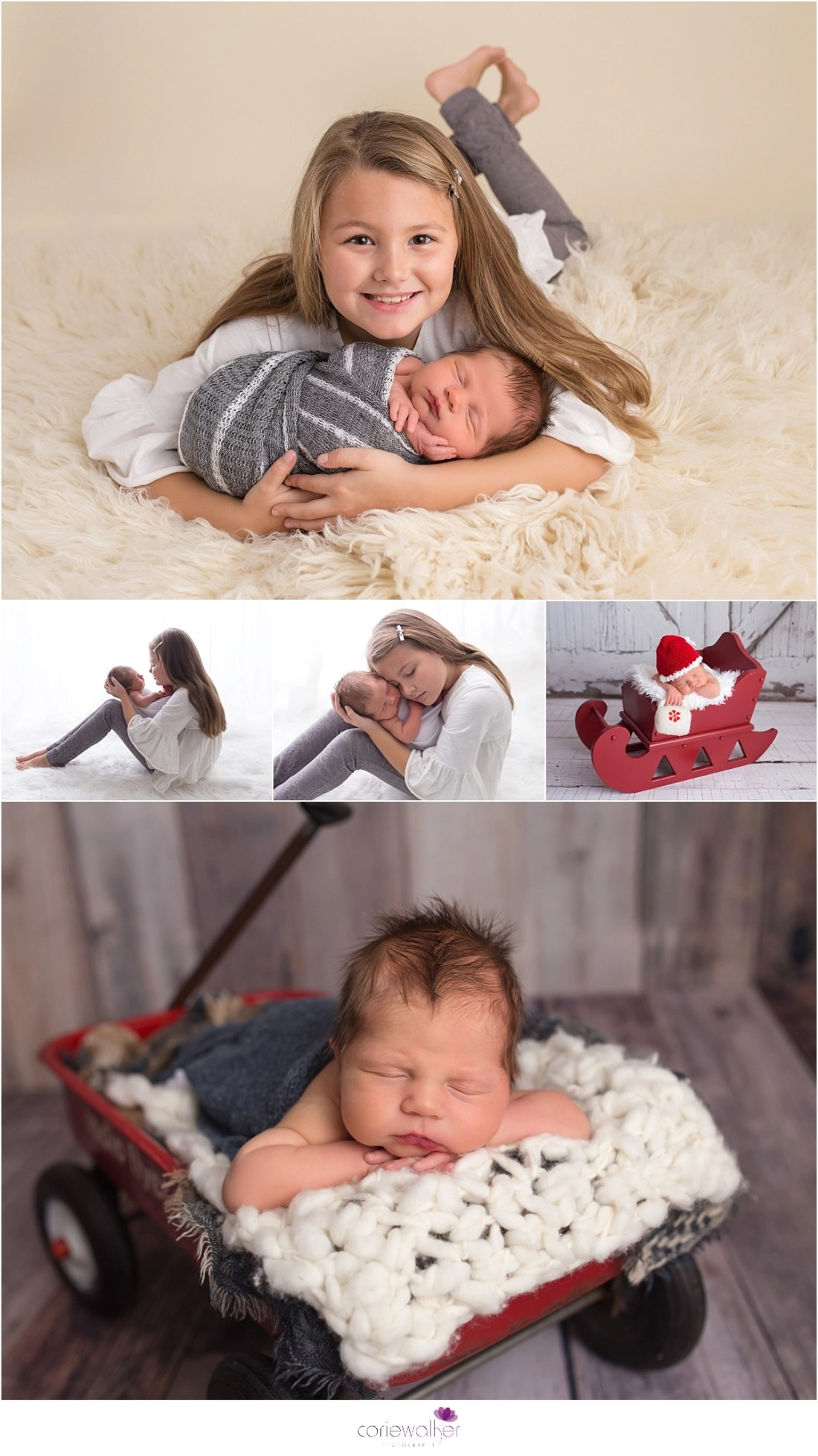 great newborn photos ohio