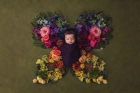 Fairy Tale Newborn Portraits