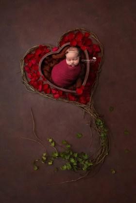 valentines baby red petals