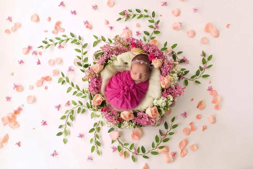 Akron Newborn Photo Session