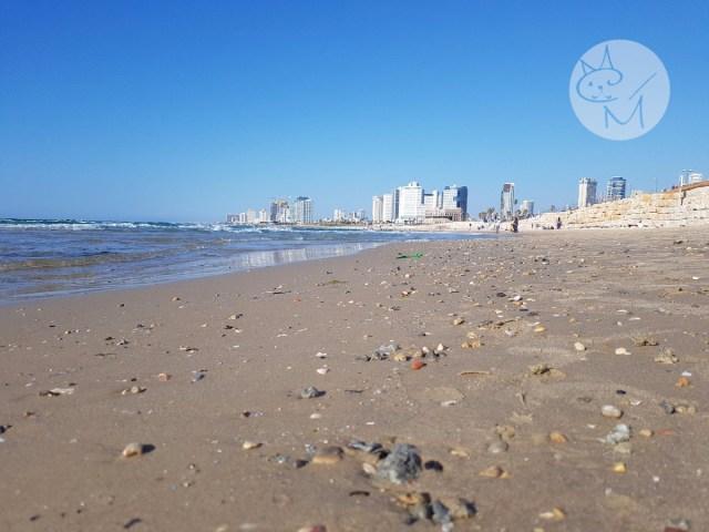 Tel Aviv, Vestul modern de la marginea Orientului (Ep 10)