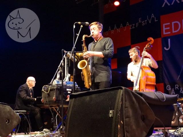 Gărâna Jazz Festival XXI, o retrospectivă a celor 20 de ediții