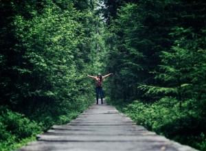 Pădurea verde și fermecată din basmele populare există! E Tinovul Mare – Poiana Stampei!
