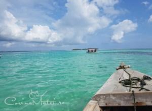 Zanzibar e poarta către Africa, aflată pe un tărâm magic