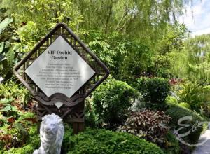 Junglă urbană: Grădina Botanică din Singapore, patrimoniu UNESCO