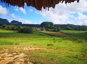 Viñales: peisaje, tutun, case coloniale și multă bucurie